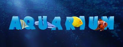 Word AQUARIUM with many tropical fish Stock Photos