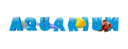 Word AQUARIUM with many tropical fish Royalty Free Stock Photography