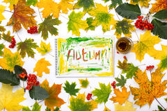 Word autumn in an album with autumn leaves Stock Photography