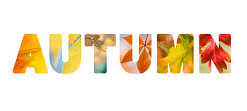 Word Autumn with colorful nature photos inside Stock Images