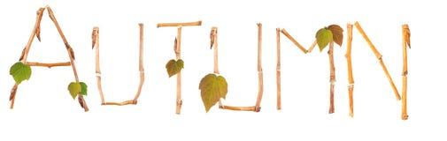 Word autumn Stock Photo