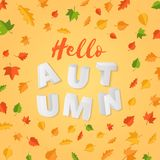Word AUTUMN composition with green yellow red leaves on yellow background in paper cut style. Fall leaf 3d realistic. Letters for design poster, banner, flyer T Royalty Free Stock Photo