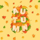 Word AUTUMN composition with green yellow red leaves on yellow background in paper cut style. Fall leaf 3d realistic. Letters for design poster, banner, flyer T royalty free illustration