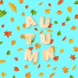 Word AUTUMN composition with green yellow red leaves on blue background in paper cut style. Fall leaf 3d realistic. Letters for design poster, banner, flyer T Royalty Free Stock Image