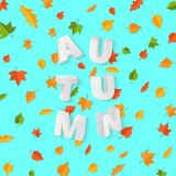 Word AUTUMN composition with green yellow red leaves on blue background in paper cut style. Fall leaf 3d realistic. Letters for design poster, banner, flyer T Stock Photography