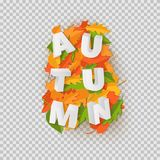 Word AUTUMN composition with green yellow red leaves with shadow in paper cut style. Fall craft leaf 3d realistic. Letters for design poster, banner, flyer T vector illustration