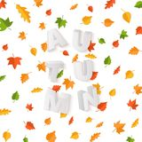 Word AUTUMN composition with green yellow red leaves on white background in paper cut style. Fall leaf 3d realistic. Letters for design poster, banner, flyer T stock illustration