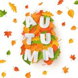 Word AUTUMN composition with green yellow red leaves on white background in paper cut style. Fall leaf 3d realistic. Letters for design poster, banner, flyer T vector illustration