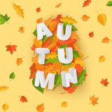 Word AUTUMN composition with green yellow red leaves on yellow background in paper cut style. Fall leaf 3d realistic. Letters for design poster, banner, flyer T vector illustration