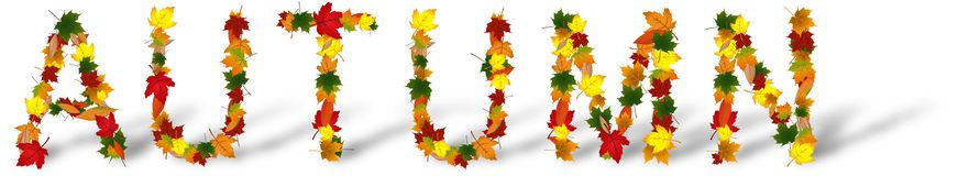 Word Autumn created from various colored leafs Royalty Free Stock Images