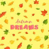 Word autumn DREAMS composition with green yellow red leaves on yellow background in paper cut style. Fall leaf 3d. Realistic letters for design poster, banner Stock Photography