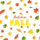 Word autumn FALL composition with green yellow red leaves on white background in paper cut style. Fall leaf 3d realistic. Letters for design poster, banner stock illustration