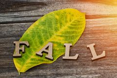 Word autumn is made of wooden letters on a yellow-green leaf and a wooden background. Close-up Stock Image