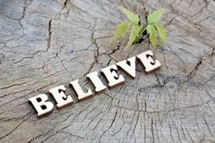 The word BELIEVE folded from the wooden letters on the old stump beside the young green sprout. The concept of nature protection e. The word BELIEVE folded from royalty free stock image