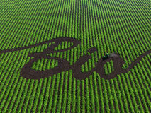 Word bio on the cultivated land. Word bio on the green cultivated land Royalty Free Stock Images