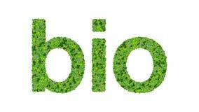 Word bio gemaakt van groene die bladeren op witte achtergrond worden geïsoleerd Stock Fotografie