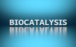 Word Biocatalysis. Written in large bold white letters and placed on blue background over reflective surface. 3d illustration royalty free illustration