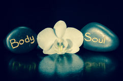 Word body and soul and white orchid Royalty Free Stock Images