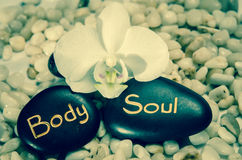 Word body and soul and white orchid Royalty Free Stock Photos