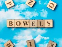 The word bowels Stock Photos