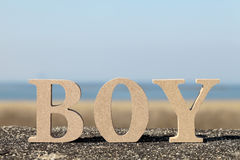 Word boy made with wooden block Stock Photography