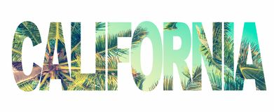 Word California with palm trees on white royalty free stock image
