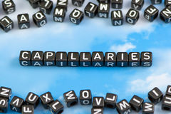 The word Capillaries. On the sky background royalty free illustration