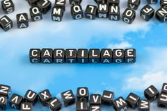 The word Cartilage. On the sky background Royalty Free Stock Photos