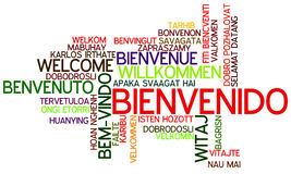 Word Cloud Bienvenido. Word Cloud `Bienvenido/Welcome` Spanish Royalty Free Stock Photo
