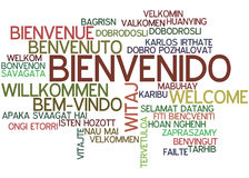 Word Cloud Bienvenido. Word Cloud `Bienvenido/Welcome` Spanish Royalty Free Stock Photos