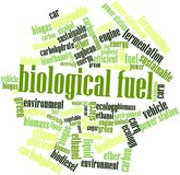 Word cloud for Biological Fuel. Abstract word cloud for Biological Fuel with related tags and terms Stock Photography