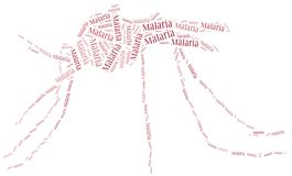 Word cloud malaria disease related Stock Image
