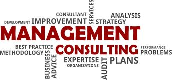 Word cloud - management consulting Royalty Free Stock Photo