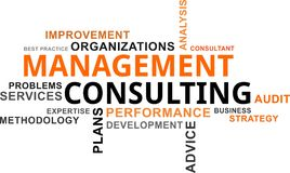 Word cloud - management consulting Royalty Free Stock Image