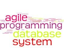 Word cloud - software development