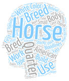 Word Cloud Text Background Concept. The American Quarter Horse text background wordcloud concept Royalty Free Stock Photography