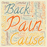 Word Cloud Text Background Concept. Cholecystitis and Back Pain text background wordcloud concept stock photo