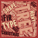 Word Cloud Text Background Concept. Christmas Tree Types text background wordcloud concept Stock Image