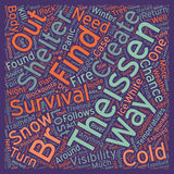 Word Cloud Text Background Concept. Cold Weather Survival text background wordcloud concept Stock Photography