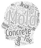 Word Cloud Text Background Concept. Concrete Paver Molds The Latest Trend in Home Improvement text background wordcloud concept Stock Images