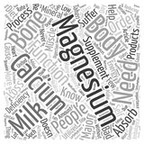 Word Cloud Text Background Concept. Did You Know Calcium Needs Magnesium To Be Absorbed text background wordcloud concept Stock Images