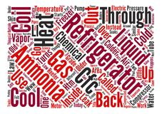 Word Cloud Text Background Concept. The Insanity of the Defense text background wordcloud concept Stock Photos