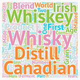 Word Cloud Text Background Concept. Some Facts About Whiskey Or Whisky text background wordcloud concept vector illustration