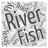 Word Cloud Text Background Concept. Texas Fly Fishing word cloud concept Stock Photography