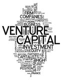 Word Cloud Venture Capital. Word Cloud with Venture Capital related tags Royalty Free Stock Image