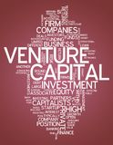 Word Cloud Venture Capital. Word Cloud with Venture Capital related tags Royalty Free Stock Images