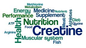 Word Cloud on a white background - Creatine Royalty Free Stock Image