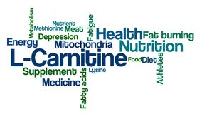 Word Cloud on a white background - L-Carnitine Stock Images