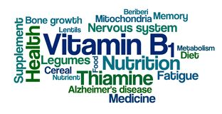 Word Cloud on a white background - Vitamin B1 Royalty Free Stock Photo