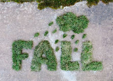 Word DALING die van droog groen gras met wolk en regendruppels op grijze steenachtergrond wordt gemaakt Regenachtig weer bij de h Royalty-vrije Stock Foto's